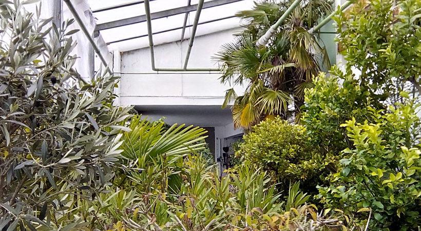 Pflanzen-Ueberweinterung-Au-820×450[1]