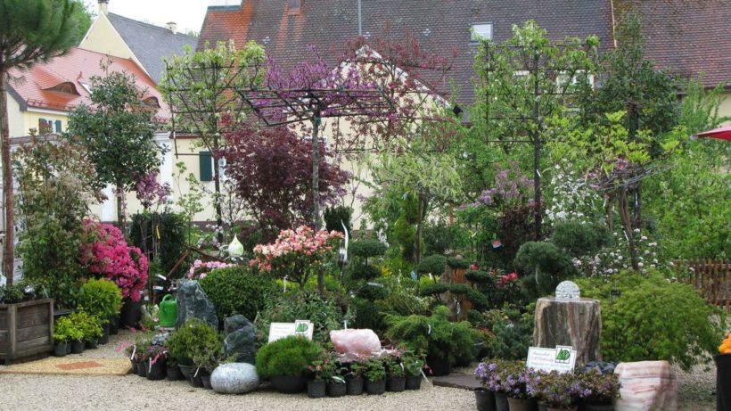 Vorankündigung Lebensraumgarten