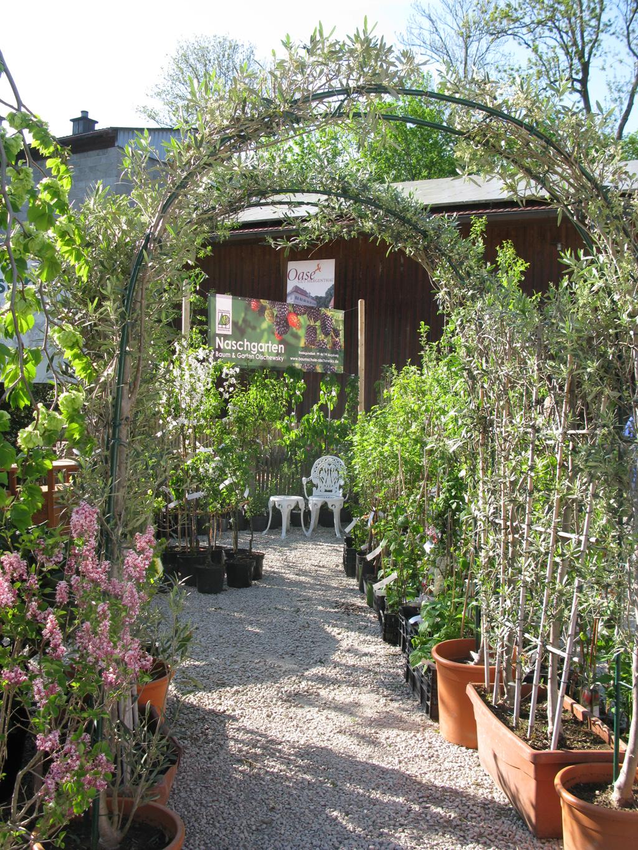 Eingang zum Naschgarten